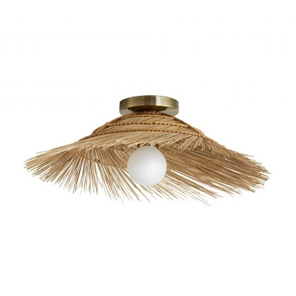 Hayes Sconce/ Ceiling Mount